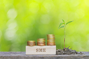 How can SMEs benefit from new payment regulations?